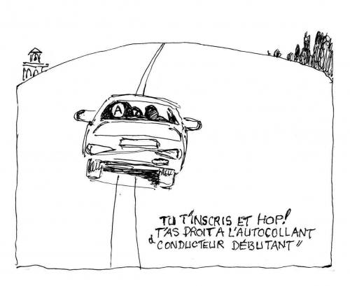 auto écoles,permis de conduire,plateformes en ligne,cnpa,permis de conduire en ligne