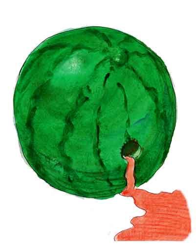 jean-vincent macé,cécile duflot,danièle hoffman-rispal,manuel valls,pascal canfin,écologistes,eelv,les verts