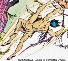 tarzan,bd de collection,bd,bd anciennes,hogarth,sexualité,illustrés pour enfants