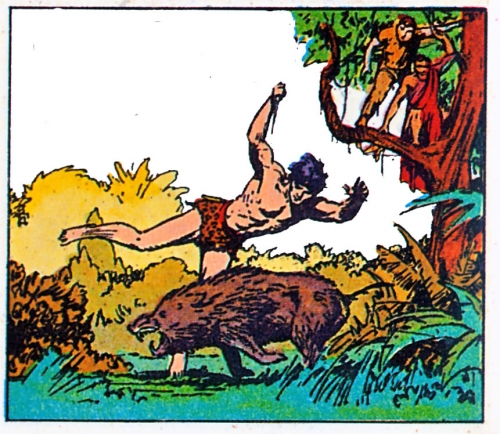 BD-Tarzan,-mai-1936.jpg