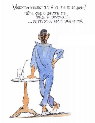 Macron le grand divorce.jpg
