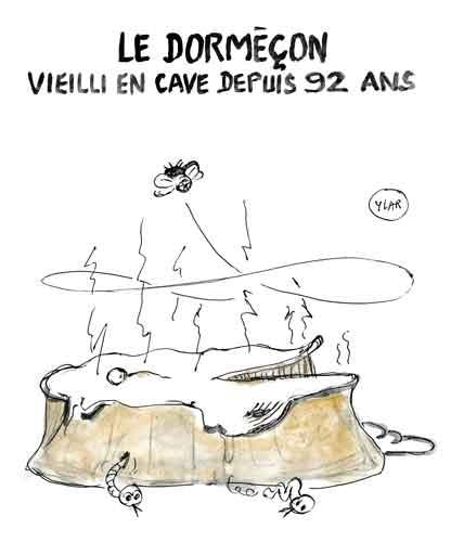 Décès-Jean-d'Ormesson.jpg