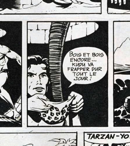 BD-Tarzan,-n°-13,-1972.jpg