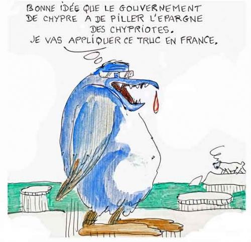 françois hollande,carla bruni sarkozy,pingouin,manchot,politique,média,vie des animaux