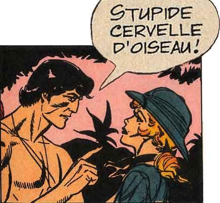 bd,bandes dessinées de collection,edgar rice burroughs,tarzanides du grenier,bar zing,tarzan,rex maxon,hogart