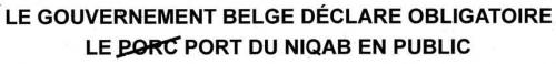 Texte-Niqab-belge.jpg