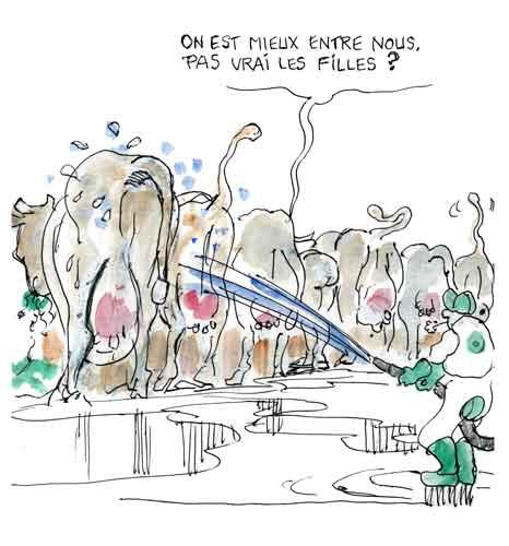 Cécile Duflot,manifestations de Nantes,salon de l'agriculture,