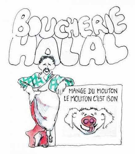 viande halal,moeurs musulmanes,religion,protection animale,cruauté envers les animaux,abattage,conditions des animaux,religion musulmane