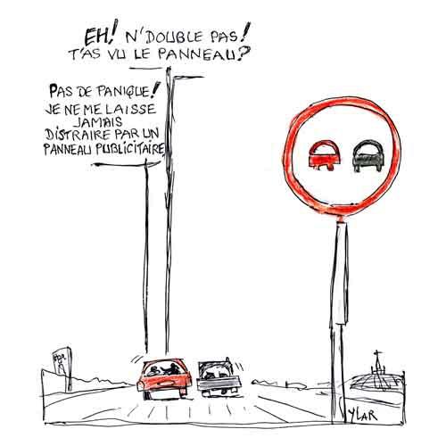 Mortalité-sur les routes.jpg