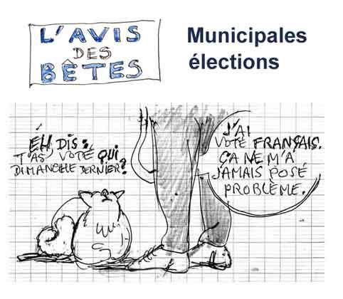 L'avis-des-bêtes-élections.jpg