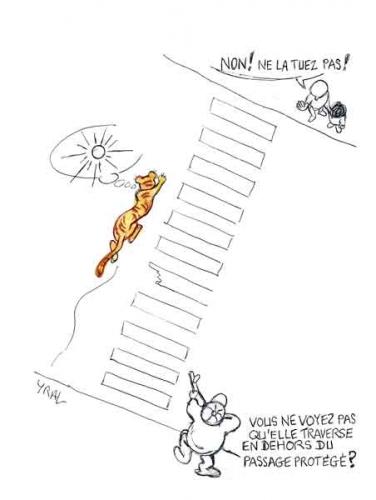 Tigresse-abattue à Paris.jpg