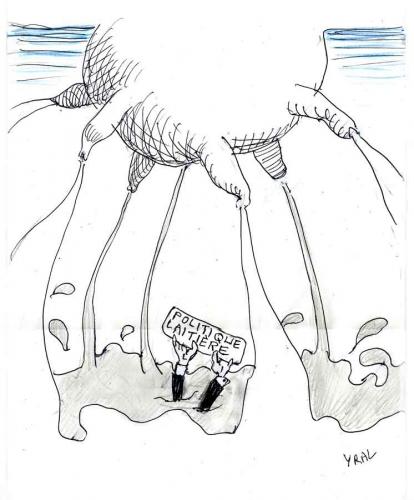 Politique-laitière.jpg