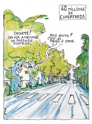 Sécurité-routière-arbres.jpg