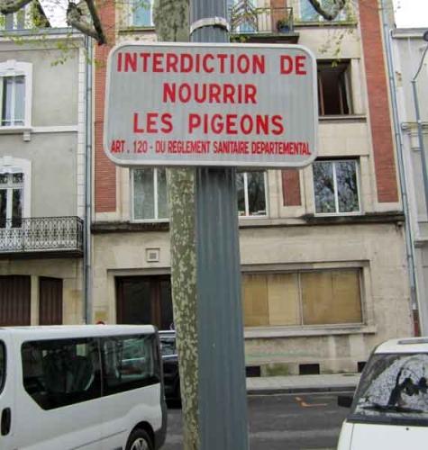 Montluçon,déjections canines,civisme,propreté,appel à la mairie