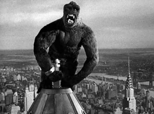King-Kong-Flèche.jpg