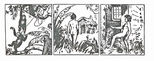 Tarzan enfant,E.R. Burroughs, Harold Foster,censure,bandes dessinées de collection,Doc Jivaro,Bar Zing de Montluçon,