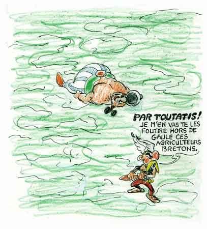 algues vertes,sangliers,pollution,Côte d'Armor,Bretagne