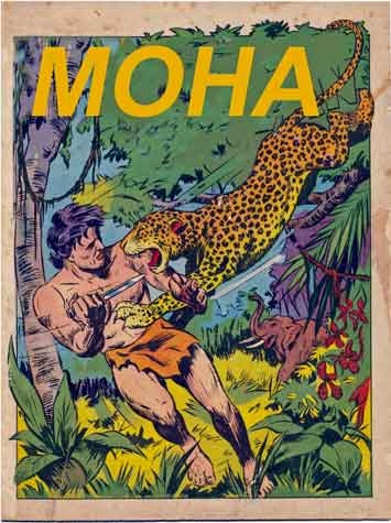 bd,bd anciennes,collection bd,tarzan,tarzanides,tarou,editions artima