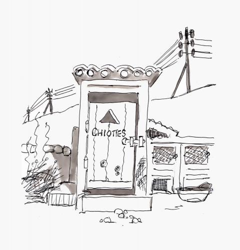 Pitbull-à-Rolex.jpg
