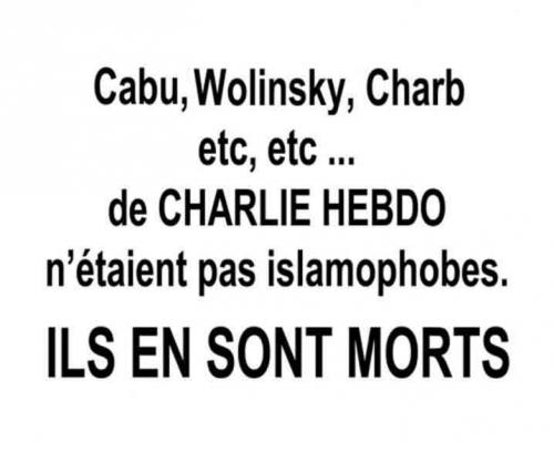 charlie hebdo,attentats,islam,rassemblement paris 11-01-2015,cabu,wolinski,charb