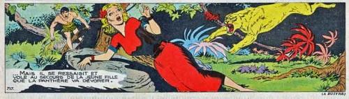 bd,bd anciennes,hogarth,bob lubbers,tarzan,tarzanides,illustrations,dessin,journaux pour enfants