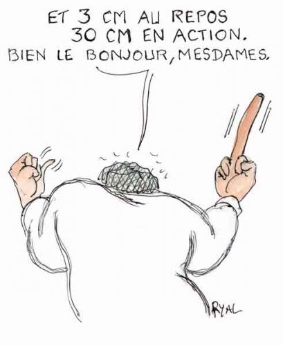 Jean-Luc Mélenchon,patrimoine déclaré,patrimoine des politiques,fraude fiscale,