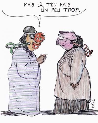 Loi-anti-burqa.jpg